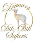 Damara Dik Dik Safaris
